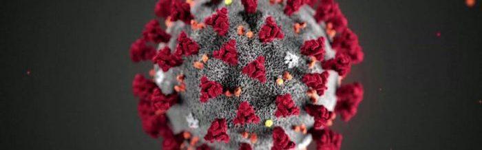 microscopic image of COVID-19 virus